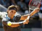 Federer, ¿épico o irregular?