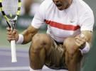 Indian Wells 2010: Nadal y Ljubicic son los primeros semifinalistas tras ganar a Berdych y Mónaco