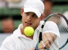 Brisbane 2011: Roddick y Anderson a semifinales, Söderling a cuartos; listas las semifinalistas en damas