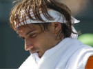Masters de Miami 2011: Djokovic avanza a semifinales, David Ferrer cae ante americano Mardy Fish