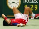 Copa Davis 2011: Djokovic tiene que retirarse y Argentina jugará la final ante España