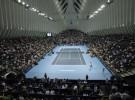 ATP Valencia Open: avanzan Ferrer, Granollers, Ferrero y Tsonga, caen Verdasco y Montañés