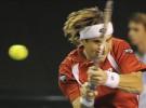 ATP Masters de París-Bercy 2011: David Ferrer entre los primeros cinco clasificados a cuartos de final