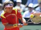 Copa Davis 2012: España a semifinales después de la victoria de Ferrer ante Melzer