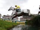 La Gran National en peligro de ser suspendida por la muerte de dos caballos