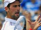 Masters 1000 de Cincinnati: Federer y Djokovic a la final después de ganar a Wawrinka y Del Potro
