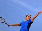 Djokovic y Almagro jugarán la final en Abu Dhabi tras eliminar a Ferrer y Tipsarevic