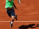 Roland Garros 2013: Ferrer y Tsonga semifinalistas tras barrer con Robredo y Federer