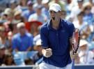Masters 1000 de Cincinnati 2013: Isner derrota a Del Potro y espera a Nadal o Berdych en la final