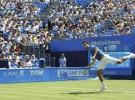 ATP Halle 2014: Federer y Falla, finalistas; ATP Queen's: Feliciano López jugará la final ante Dimitrov