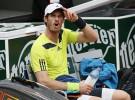 Roland Garros 2014: Gulbis elimina a Federer; Murray, Verdasco y Carla Suárez Navarro avanzan a cuartos