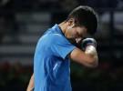 ATP 500 Dubai 2016: López avanza por retiro de Djokovic, Bautista eliminado