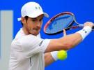 ATP Queen's 2016: Murray irá por quinta corona ante Raonic