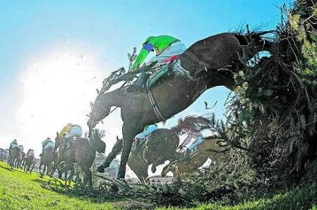 Grand National 2009