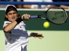 Roger Federer derrota a David Ferrer y se hace con el tercer puesto en Abu Dhabi