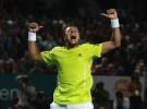 Open de Australia 2010: Jo-Wilfried Tsonga sorprende a Djokovic y se verá con Federer en semifinales