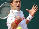 Masters de Montecarlo 2010: Djokovic y Verdasco jugarán la segunda semifinal
