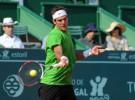 ATP Estoril 2011: Söderling y Del Potro a cuartos de final, en damas Anabel Medina Garrigues a cuartos