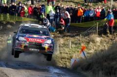Rally de Gales 2011: Latvala gana y Loeb celebra el título con accidente y abandono