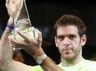 Berdych, Del Potro y Seppi ganan los ATP de Estocolmo, Viena y Moscú