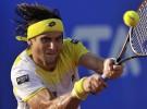 Masters 1000 de Miami 2013: David Ferrer único español en cuartos de final