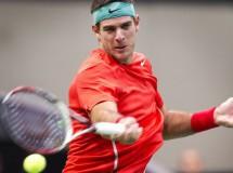 ATP Rotterdam 2014: Del Potro, Berdych y Murray a cuartos de final