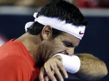 ATP Rotterdam 2014: Berdych a semifinales, Del Potro y Murray eliminados