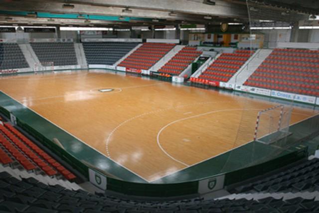 Pamplona será la sede de la Copa del Rey de balonamano 2014