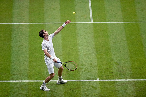 Wimbledon 2014: Murray, Dimitrov y Bautista Agut a 3ra ronda, Gulbis eliminado