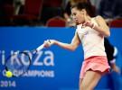WTA Sofia 2014: Andrea Petkovic se corona ante Pennetta