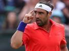 ATP Nottingham 2015: Baghdatis y Querrey a semifinales