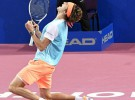 Montpellier 2017: Zverev campeón; Sofia 2017: Dimitrov campeón; Quito 2017: Estrella campeón
