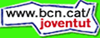 Nueva Web del Ajuntament para jóvenes