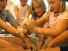 Talleres de cocina para niños en el mercado de la Boqueria