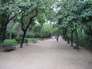 la Plaça de la Sagrada Família