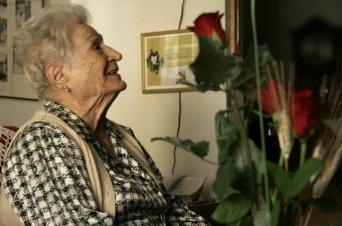 Por Sant Jordi, 'Roses contra l'oblid'