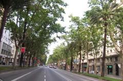 Domingos en la Diagonal y Paseo de Gràcia