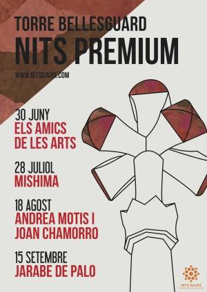 Nits Gaudí conciertos Premium
