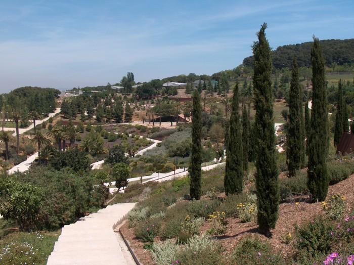 Jardin Botanico Barcelona