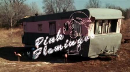 pink_flamingos.JPG