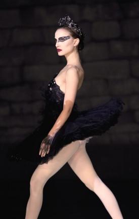 normal_black-swan-foto1.jpg