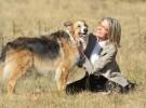 Tráiler de Darling Companion, Diane Keaton, Kevin Kline y un perro perdido