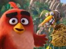 Angry Birds y su tercer tráiler nos hace ver de otra manera la película