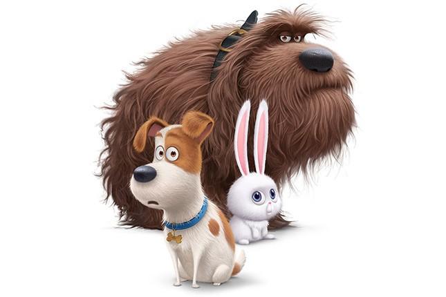 Mascotas_trailer2