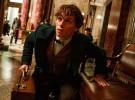 Segundo tráiler y póster de 'Animales fantásticos y dónde encontrarlos', el spin-off de 'Harry Potter'