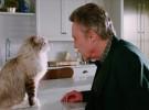 Nine Lives, tráiler de la película con un gato llamado Kevin Spacey