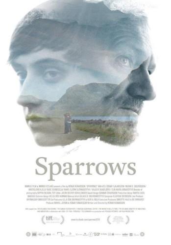 Sparrows Gorriones póster