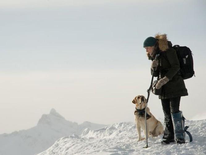 kate-winslet-mountain-between-us