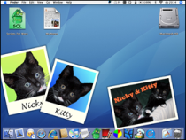 photodesktop.png