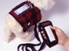 Mi perro tiene un iPod